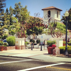 Old Town Los Gatos- marketing internship